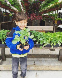 Child showing off fresh garden plants